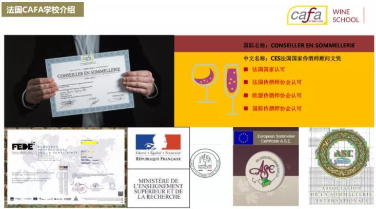 法国CAFA葡萄酒与烈酒学院